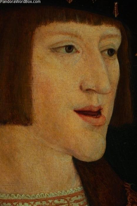 Charles V Of Austria Or Carlos I Of Spain Bernhard Strigel Habsburg Hapsburg Lip Jaw Prognathism Prominent Mandible Autosomal Dominant Mutation Inbreeding Coefficient Consanguinity