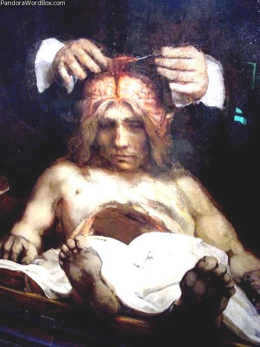 Second Anatomy Lesson - van Rijn Rembrandt - FACE BRAIN CEREBRUM ...